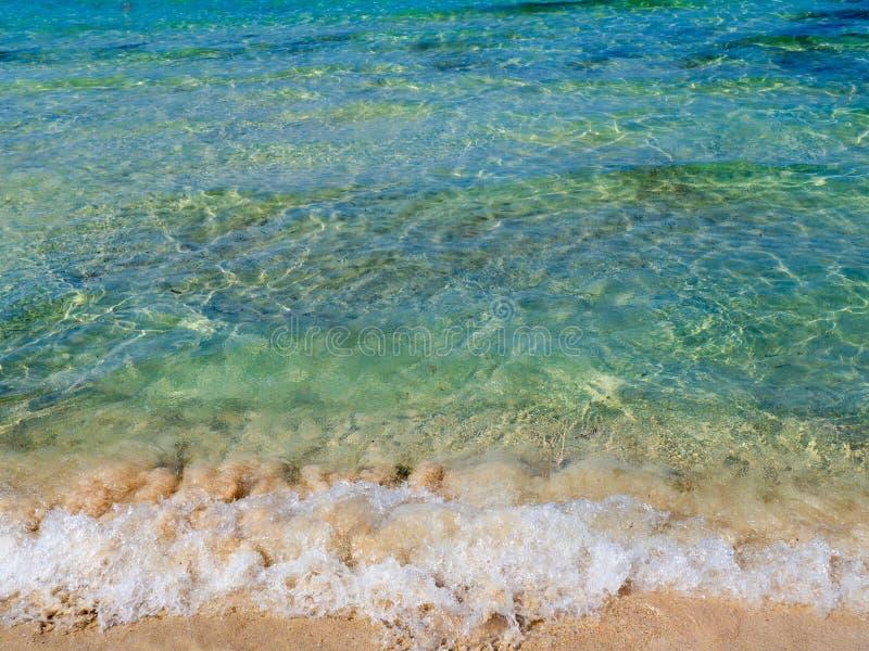 Agua azul clara hermosa y playa arenosa limpia - peque?a onda imagen de archivo libre de regalías
