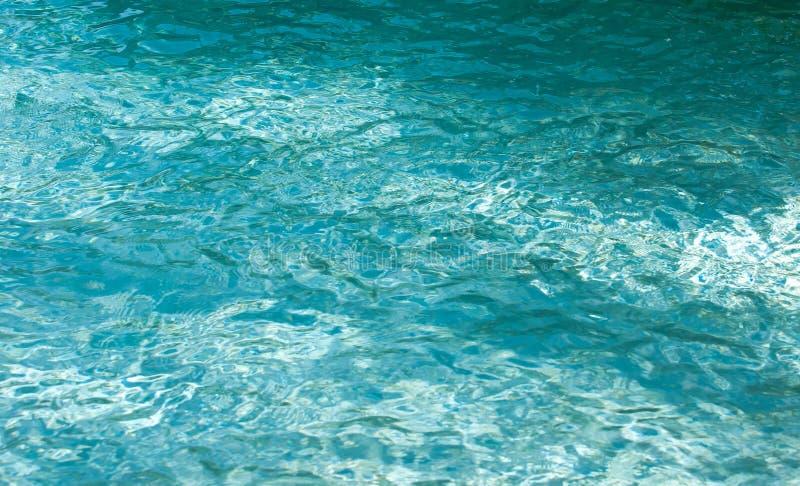 Agua azul de la aguamarina de una piscina en la Florida del sur fotos de archivo