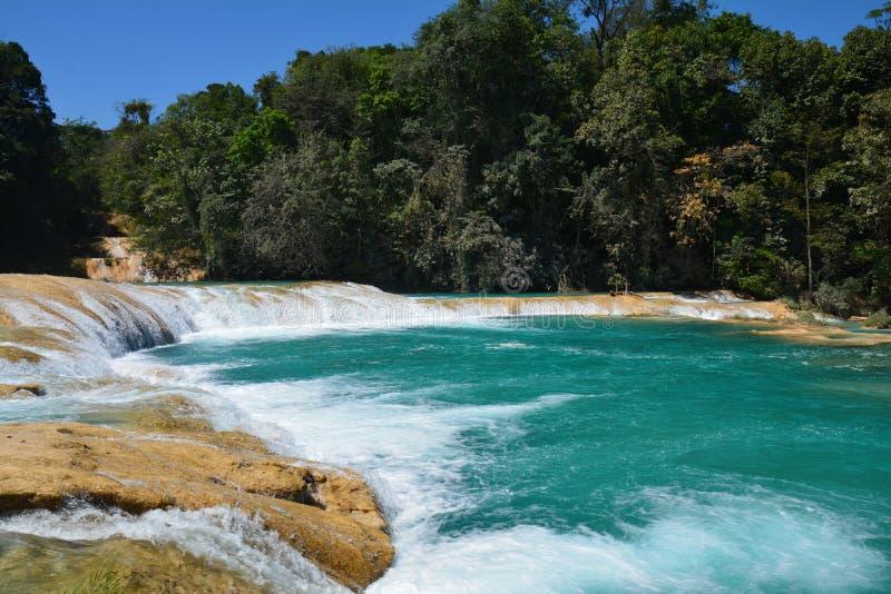 Agua Azul siklawa Chiapas Meksyk obrazy royalty free