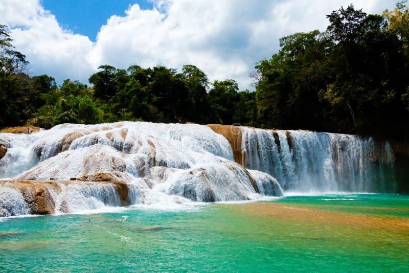 Agua Azul Waterfall imágenes de archivo libres de regalías