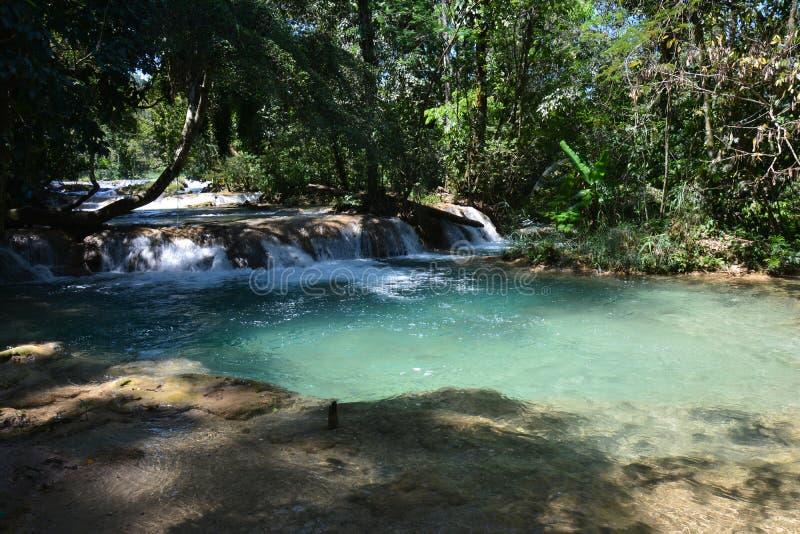 Agua Azul Waterfall Chiapas Mexico stock afbeeldingen