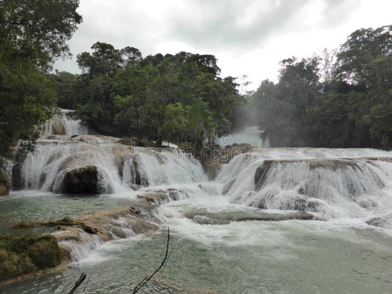 Agua Azul Waterfalls fotografia stock