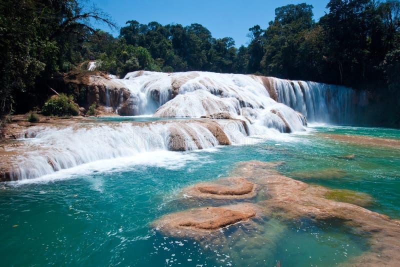 agua azules Μεξικό palenque στοκ εικόνες