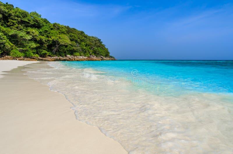Agua blanca tropical del claro de la playa y de la turquesa de la arena del mar de Andaman en la provincia de Phang Nga, Tailandi imágenes de archivo libres de regalías