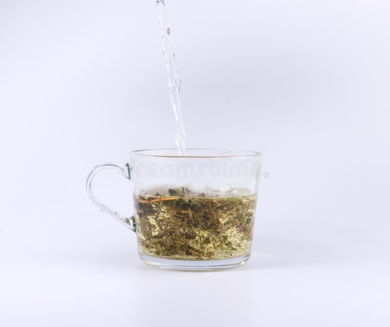 Agua caliente de colada a la taza de cristal con el té, aislado en blanco imágenes de archivo libres de regalías