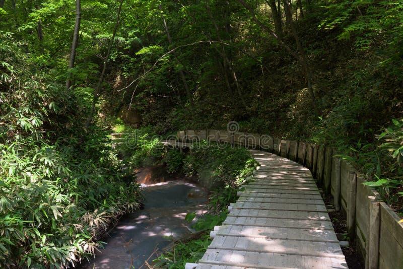 Agua caliente del río de Oyunumagawa que fluye de la charca de Oyunuma a través del valle Jigokudani del infierno imagen de archivo