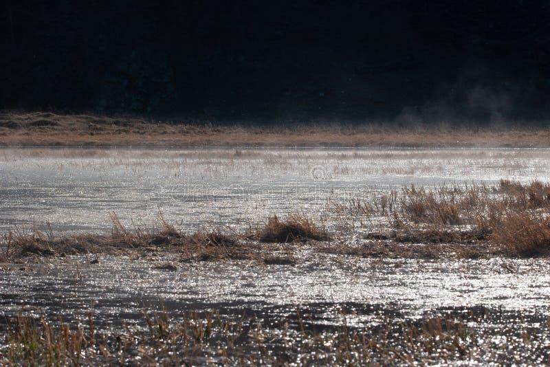 Agua chispeante en luz del sol con vapor y fondo oscuro foto de archivo