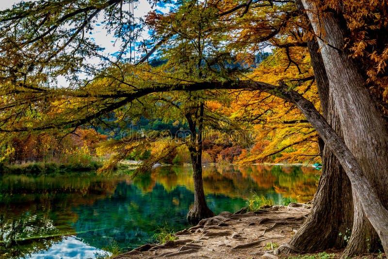 Agua clara y follaje brillante de Garner State Park, Tejas imagen de archivo