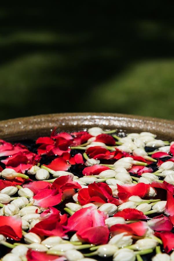 Agua con las flores para el festival tailandés Songkran imagenes de archivo