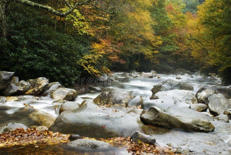 Agua corriente en otoño imagenes de archivo