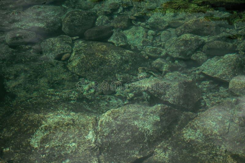 Agua cristalina en la pequeña charca con las piedras en la parte inferior imagenes de archivo