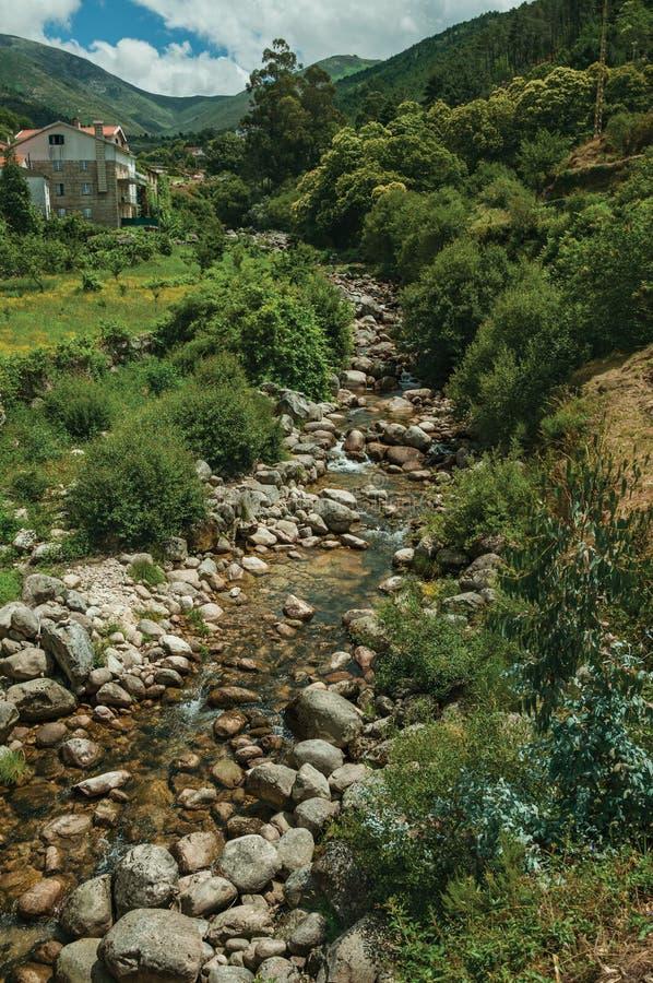 Agua cristalina en una corriente que corre abajo de la colina fotografía de archivo libre de regalías