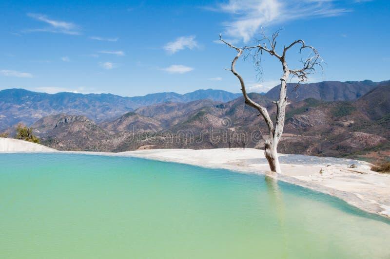 Agua d'EL de Hierve, source thermale, Oaxaca (Mexique) photographie stock