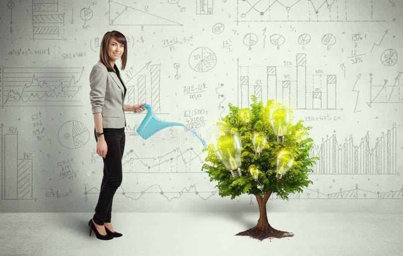 Agua de colada de la mujer de negocios en árbol creciente de la bombilla fotos de archivo libres de regalías