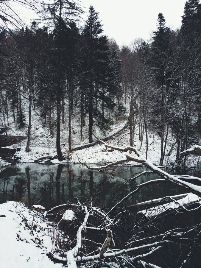 Agua de Darck fotografía de archivo libre de regalías