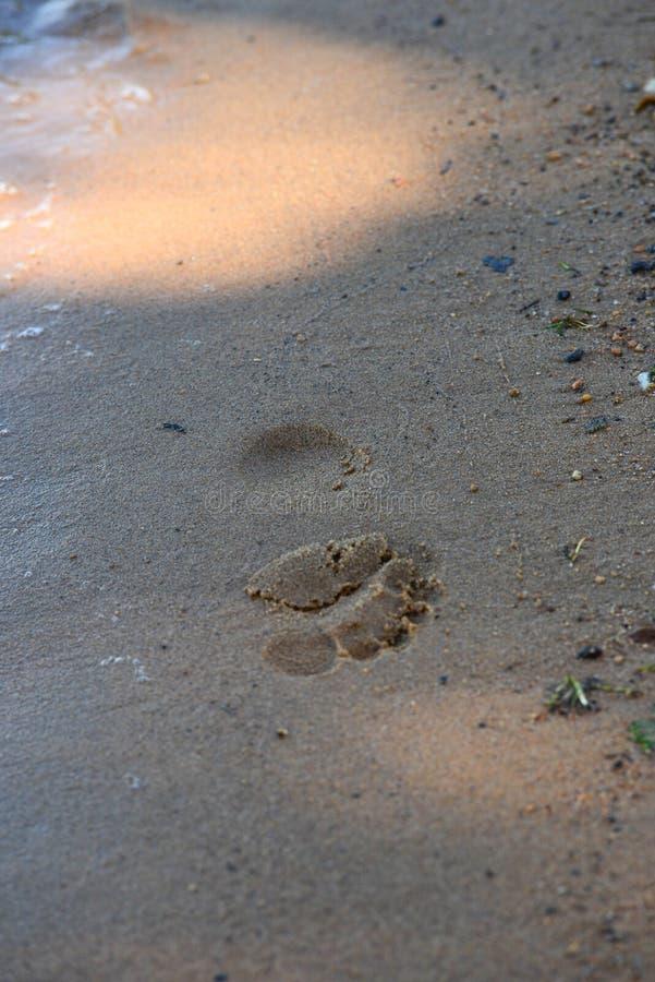 Agua de la huella de la arena por el lago fotos de archivo