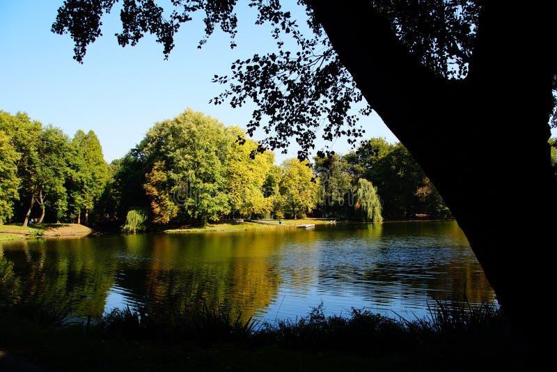 agua de la reflexión del otoño del lago imagenes de archivo