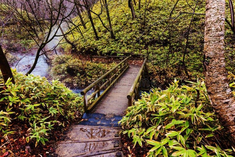 Agua de las aguas termales de Oyunumagawa, Noboribetsu fotos de archivo