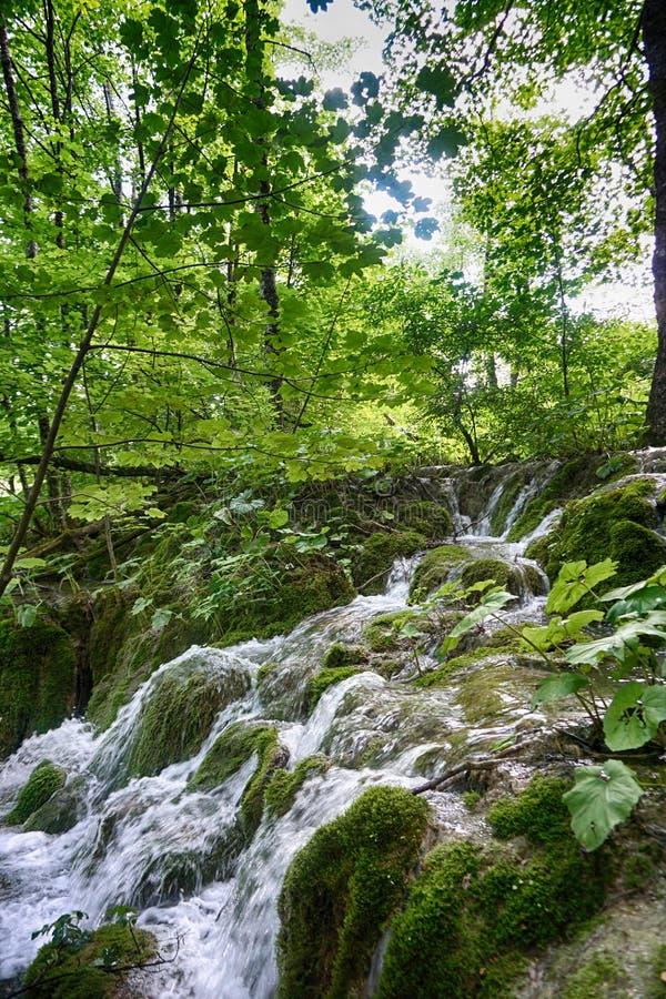 Agua de manatial en la montaña fotos de archivo libres de regalías