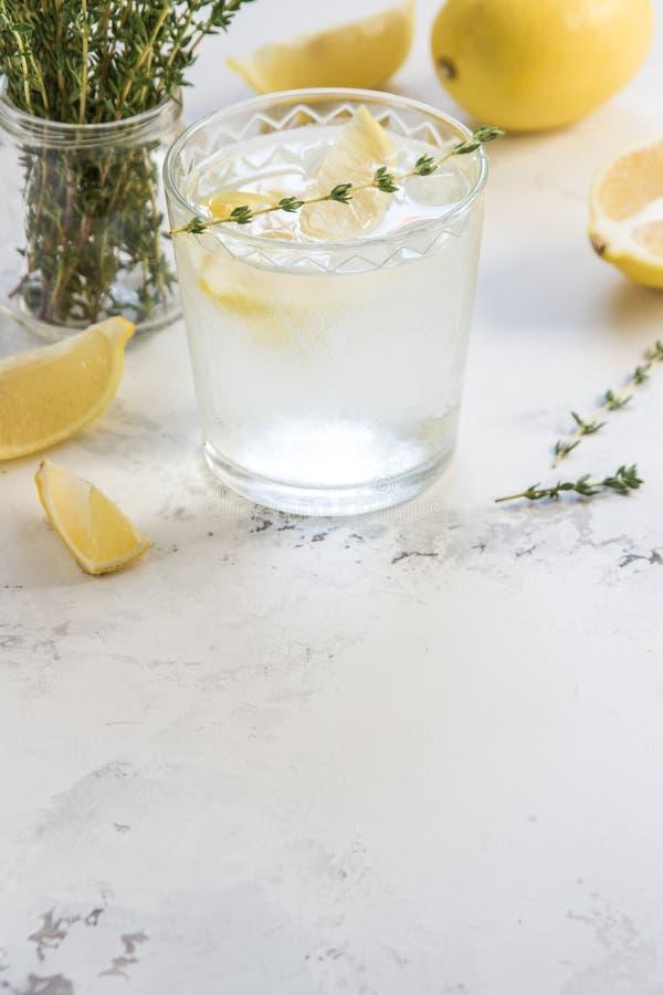Agua del Detox con el limón y el tomillo en el vidrio, espacio de la copia fotografía de archivo libre de regalías