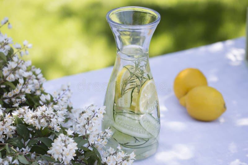 Agua del Detox, limonada fresca con hielo, limón, pepino y rosema foto de archivo