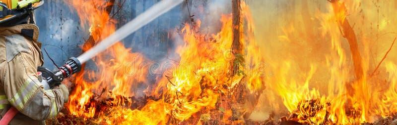 Agua del espray de los bomberos al incendio fuera de control imagenes de archivo