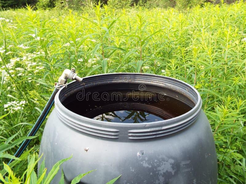 Agua del lago en un barril plástico contra la hierba verde en el prado imagen de archivo