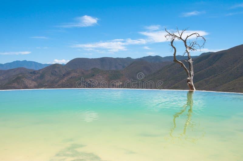 Agua do EL de Hierve, mola térmica, Oaxaca (México) imagens de stock