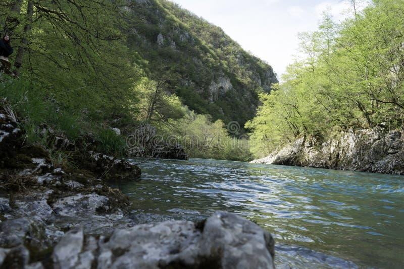 Agua fría de un río profundo rápido de la montaña de una orilla rocosa, fondo de la turquesa absolutamente transparente de los ár imágenes de archivo libres de regalías