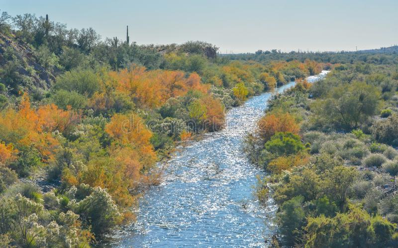 Agua Fria River in the southwest desert of Peoria, Maricopa County, Arizona USA.  royalty free stock image