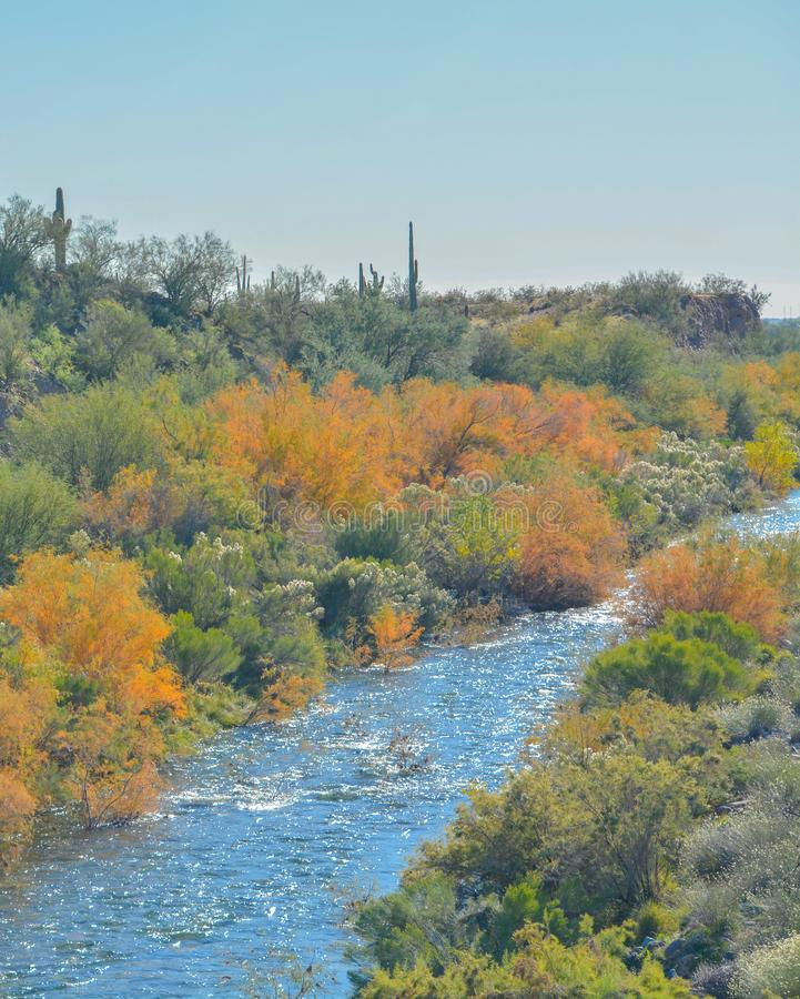 Agua Fria River in the southwest desert of Peoria, Maricopa County, Arizona USA.  stock images