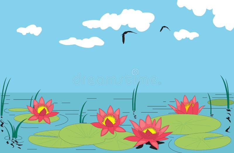 Agua lilly stock de ilustración