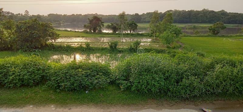 Agua natural del campo del horizonte de la hermosa vista imagen de archivo libre de regalías