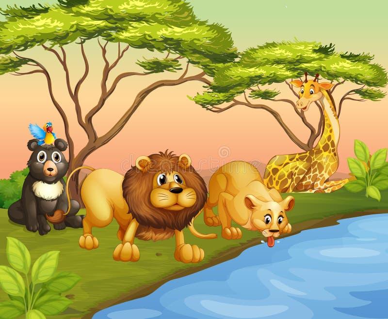 Agua potable de los animales del río stock de ilustración