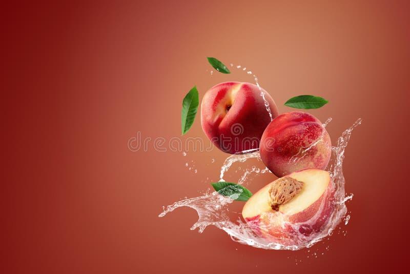 Agua que salpica en la fruta fresca de la nectarina en fondo rojo foto de archivo libre de regalías