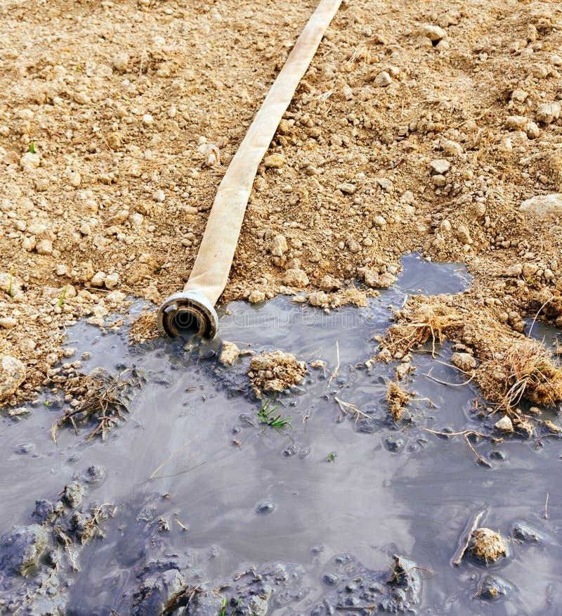 Agua que se escapa de la manguera foto de archivo