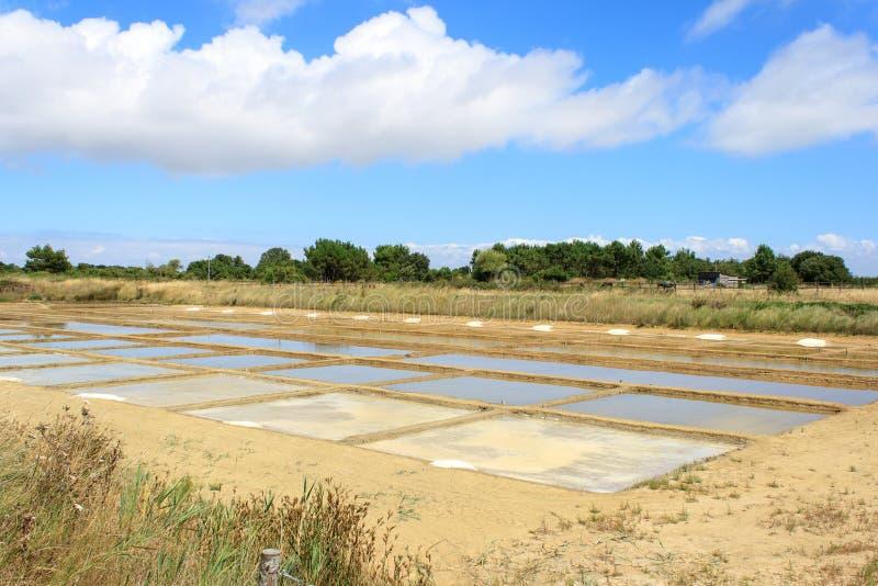 Agua salada de la sequedad en el oleron Francia de la isla imagen de archivo