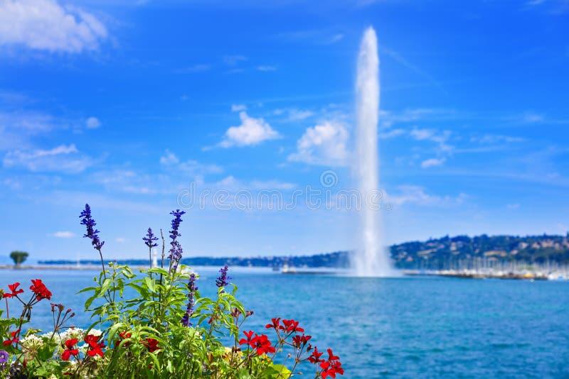 Agua Suiza del ` del chorro de agua D del lago geneva Geneve fotos de archivo libres de regalías