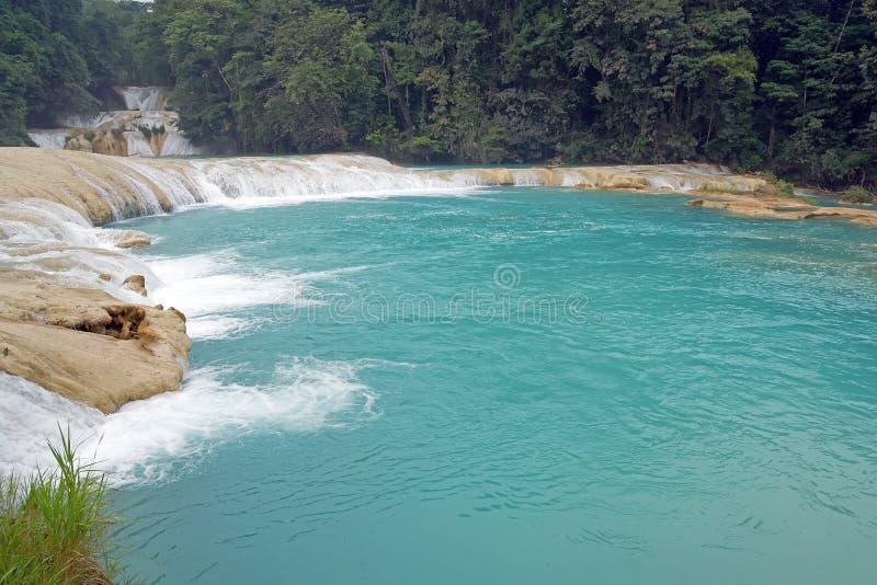Agua waterfal Azul arkivfoto