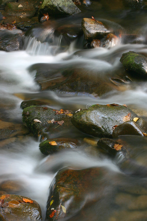 Agua y hojas imagen de archivo