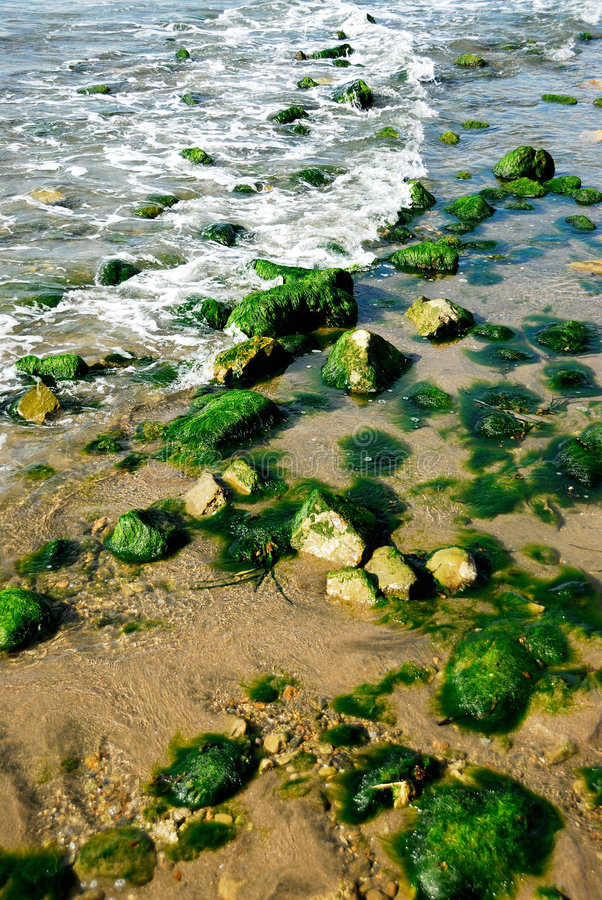 Agua y piedras verdes imagenes de archivo