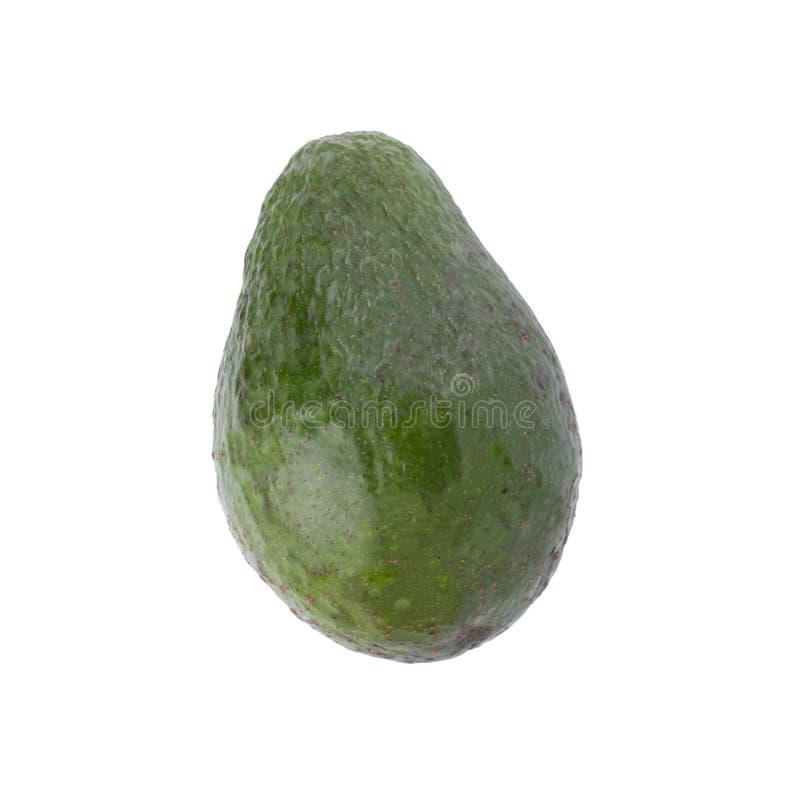 Aguacate maduro verde aislado en el fondo blanco fotografía de archivo