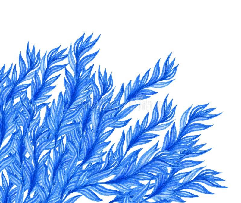 Aguarela floral azul ilustração do vetor