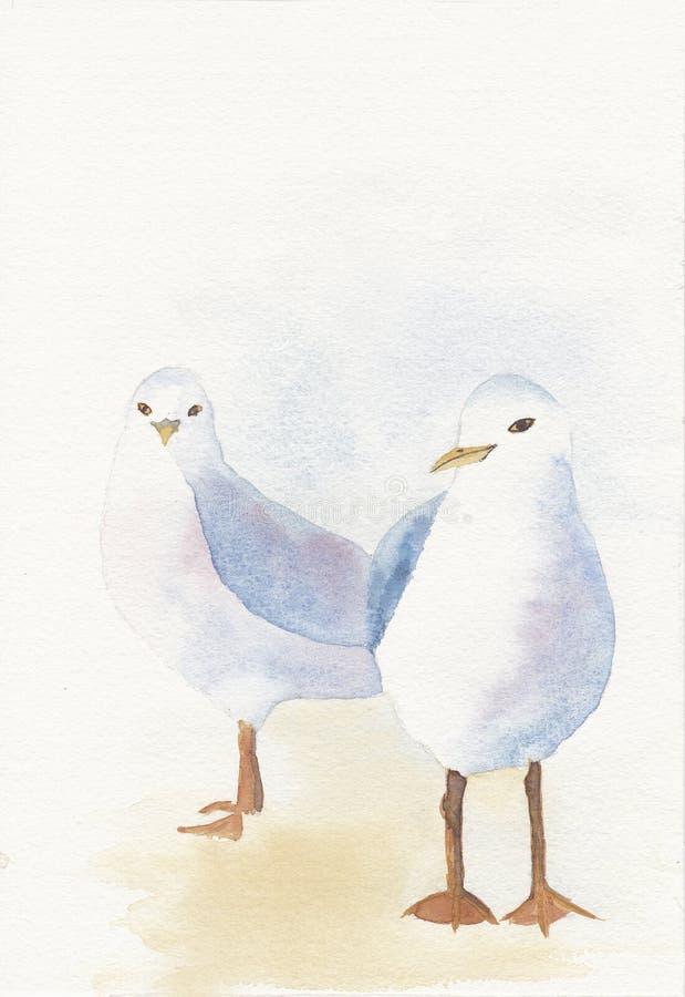 Aguarela pintado mão de duas gaivotas ilustração royalty free