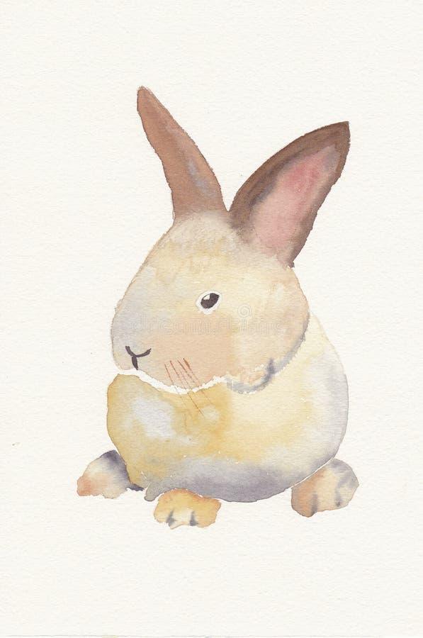 Aguarela pintado mão de um coelho do bebê ilustração stock