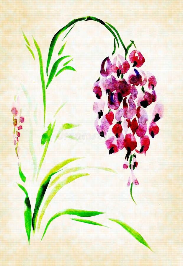 Aguarelas pintadas glicínias ilustração do vetor