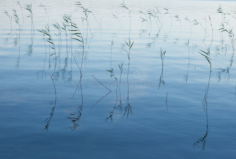 Download Aguas azules foto de archivo. Imagen de como, silueta - 7285978