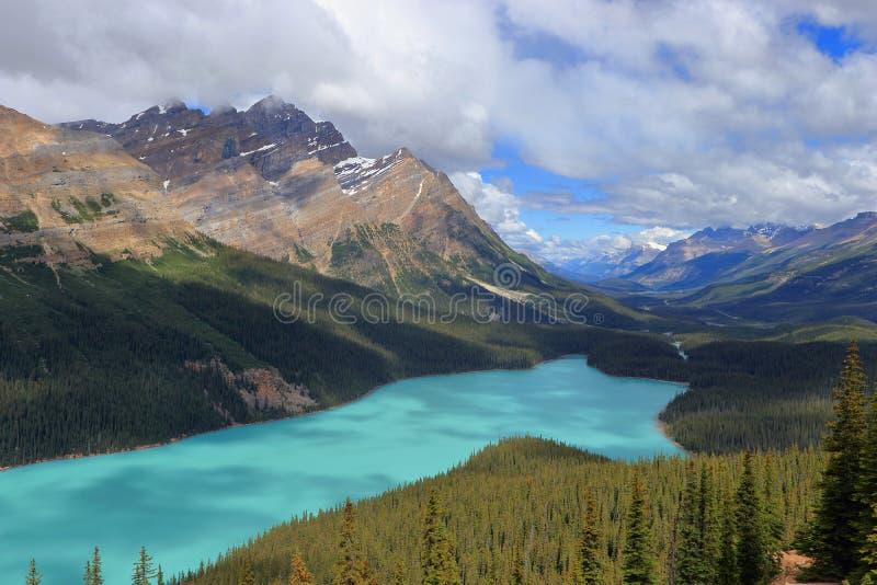 Aguas de la turquesa del lago Peyto en la cumbre del arco, parque nacional de Banff, Alberta imágenes de archivo libres de regalías