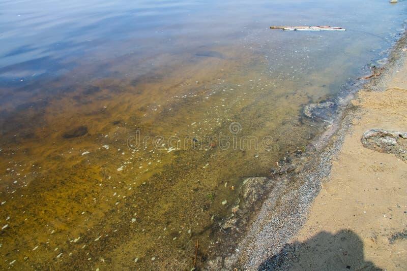 Aguas fangosas del depósito de Kanev imágenes de archivo libres de regalías