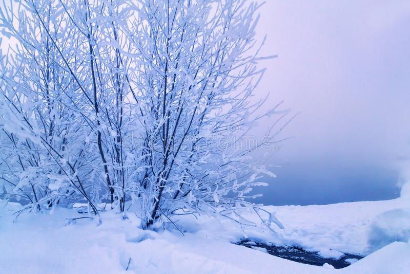 Aguas termales de Malkinsky en Kamchatka imagenes de archivo